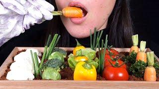 ASMR Veggie Patch Garden With Edible Soil (No Talking)