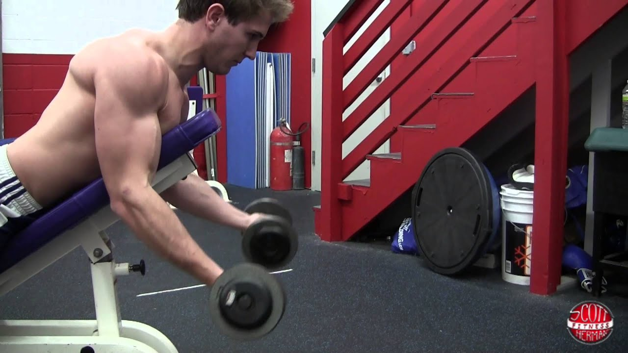 Wonderful Spider Curls Incline Bench Part - 5: How To: Prone Incline Curl With Dumbbells (Spider Curl) - YouTube