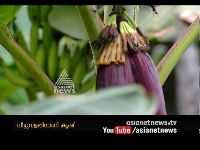 Success story Of Organic farming from Ettumanoor