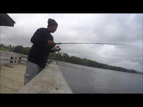 Mont Babyboi Fishing At Lake Robinson Greer SC