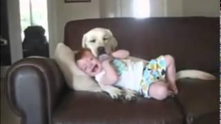 Самые прикольные видео про детей.Дети и животные.