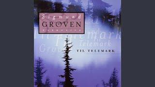 Til Telemark 6 Snø Og Granskog