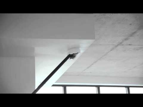 How to Clean Ceilings with a Steam Cleaner