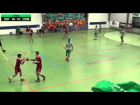 Andebol: Sporting CP 36  - 18 CD Sao Bernardo (06.03.2016)