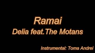 Delia feat. The Motans - Ramai (karaoke) Toma Andrei