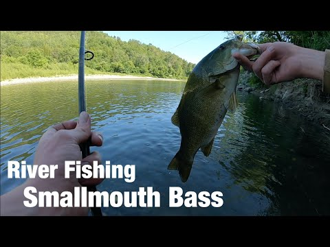 River Fishing For Smallmouth Bass!