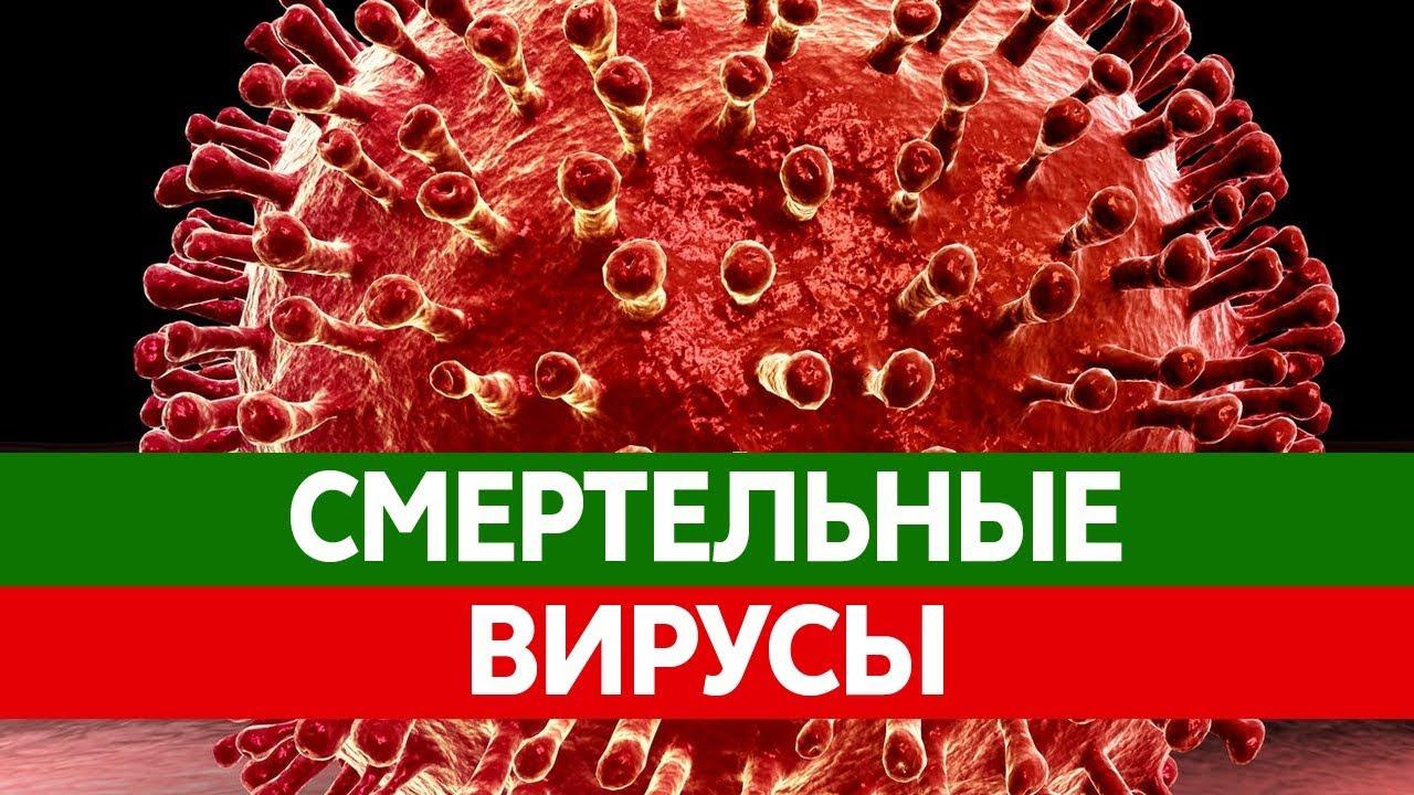 Самые ОПАСНЫЕ ВИРУСЫ у человека. Желтая лихорадка, грипп ...