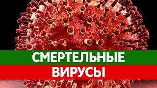 Самые ОПАСНЫЕ ВИРУСЫ у человека. Желтая лихорадка, грипп, малярия, ВИЧ и ротовирусная инфекция