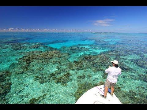 Nomad Sportfishing Adventures - The World's Best Remote Area Bluewater Sportfishing Trips