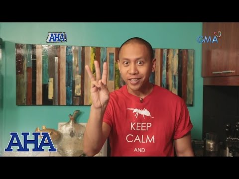 AHA!: Learn more about ants with Mikey Bustos