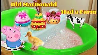 Old McDonald Had a Farm Song Nursery Rhymes