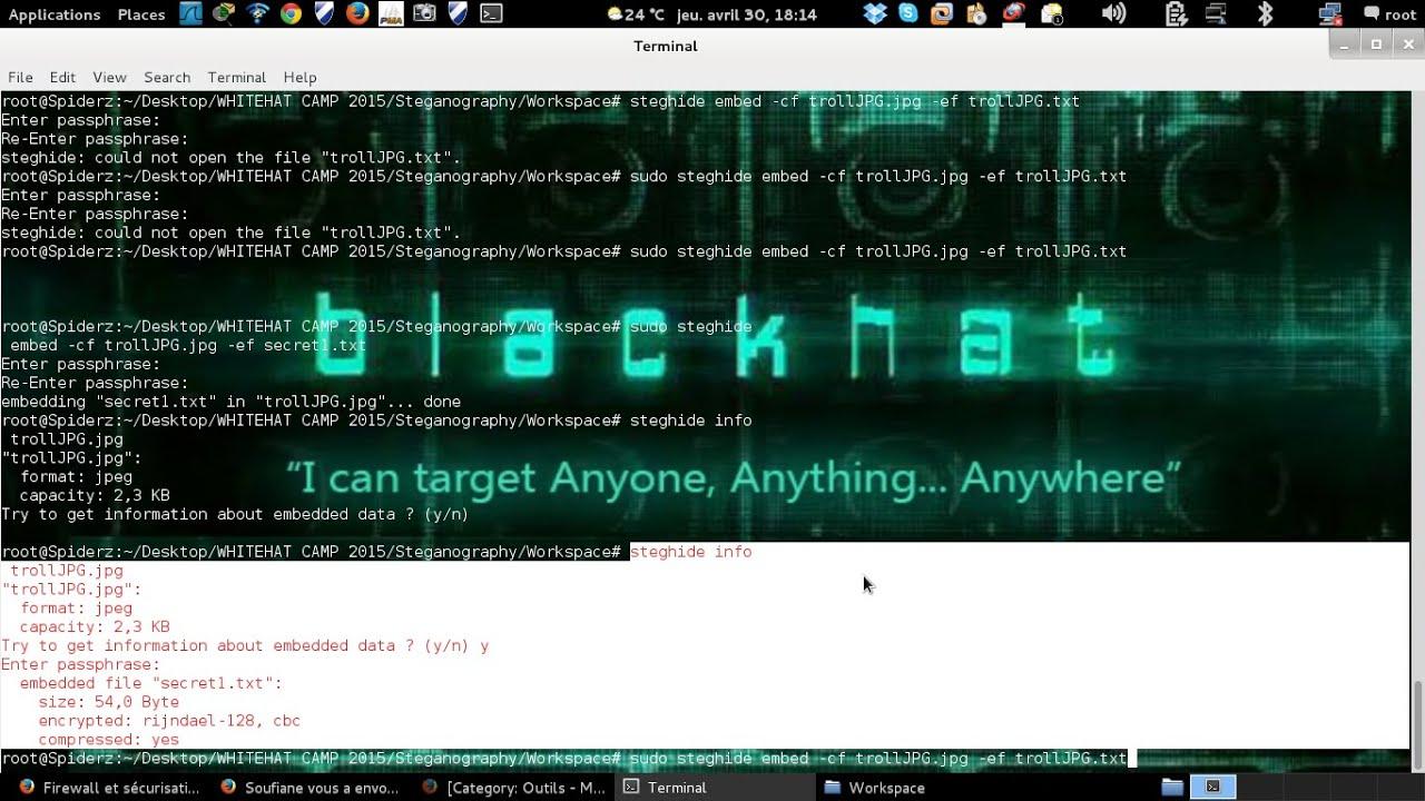 Steganography On Image Using Kali Linux