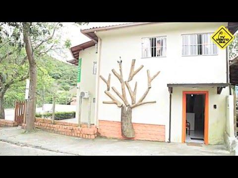 Apresentação do Árvore na TV Vento Sul