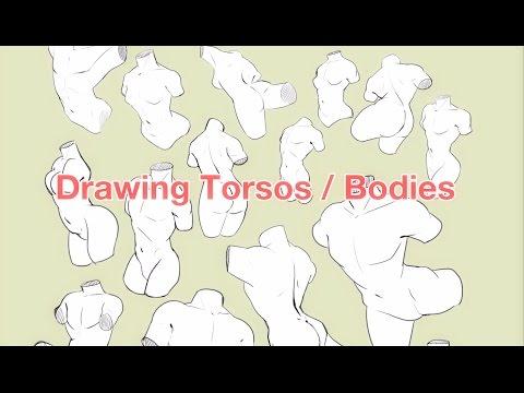 Drawing Torsos/Bodies - How I do it + Tips