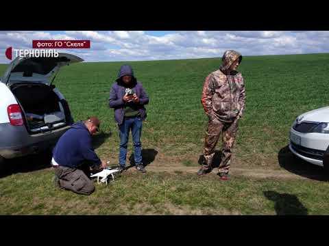 Жителя Тернополя підозрюють у незаконному полюванні на зайця