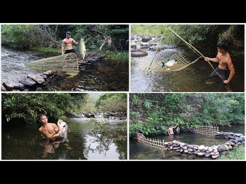 Primitive Survival : Fish Traps And Cooking Fish On a Rock - Eating Delicious