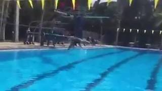 Best funny girl Diving Board Fail _ Video _2018