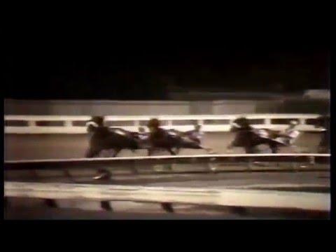 1981 Yonkers Raceway - Open Pace - Destin Grade
