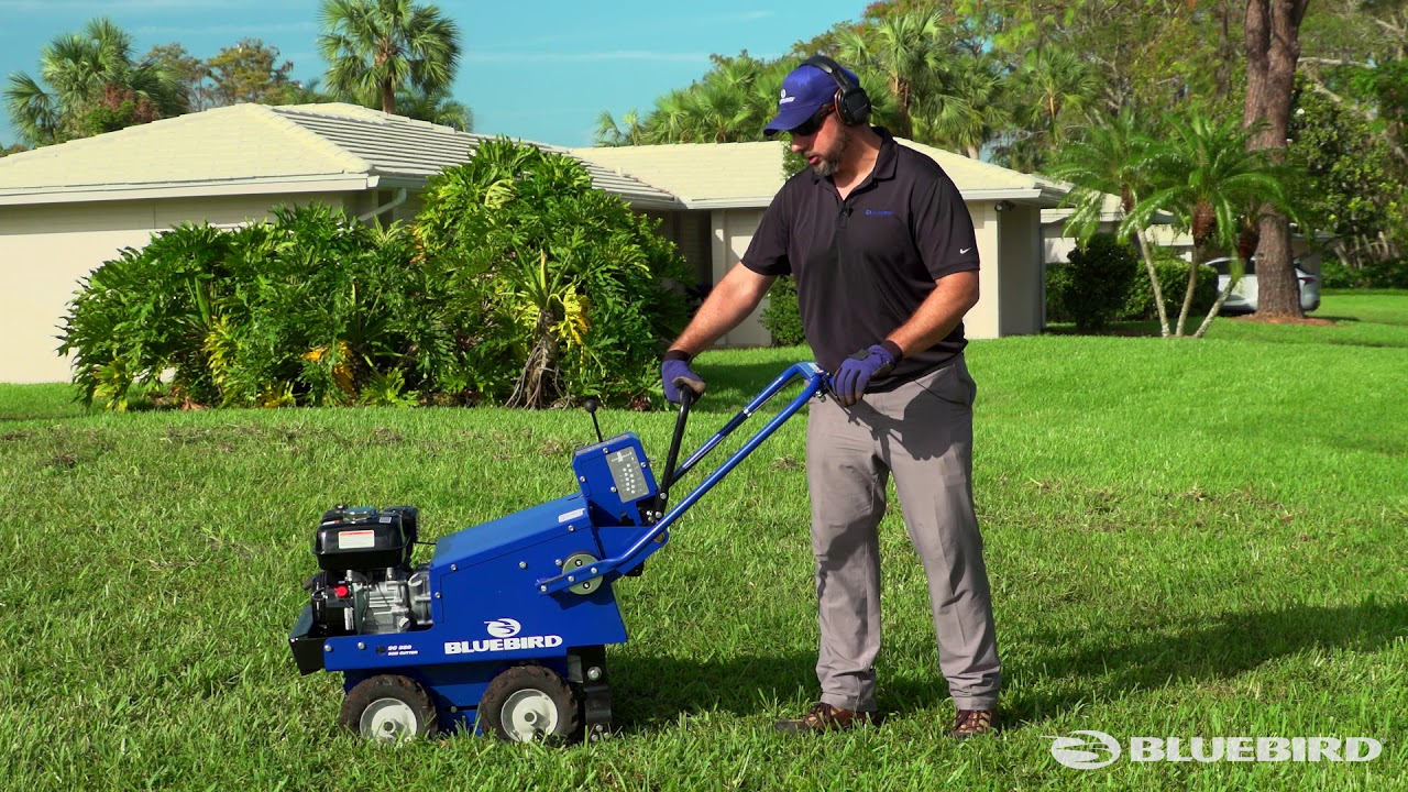 Bluebird Sod Cutter Cut To The Chase Youtube
