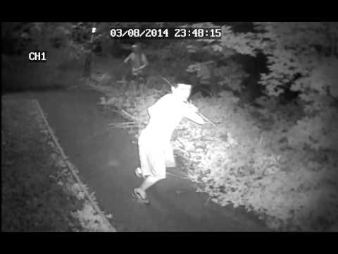 Does anyone recognise this mindless idiot? £100 reward! - Cwmbran