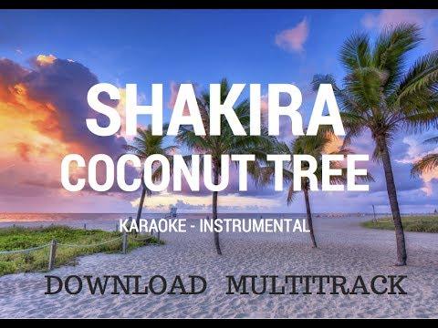 COCONUT TREE - SHAKIRA (KARAOKE - INSTRUMENTAL - MULTITRACK)