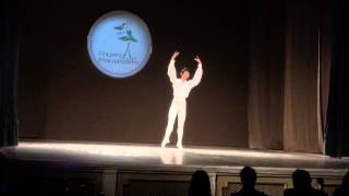 IX Bērnu un jauniešu starptautiskais horeogrāfijas konkurss RLB 26.04 2013 - 01318