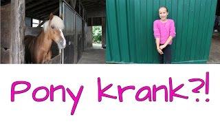 Unser Pony ist krank! | Marina und die Ponys