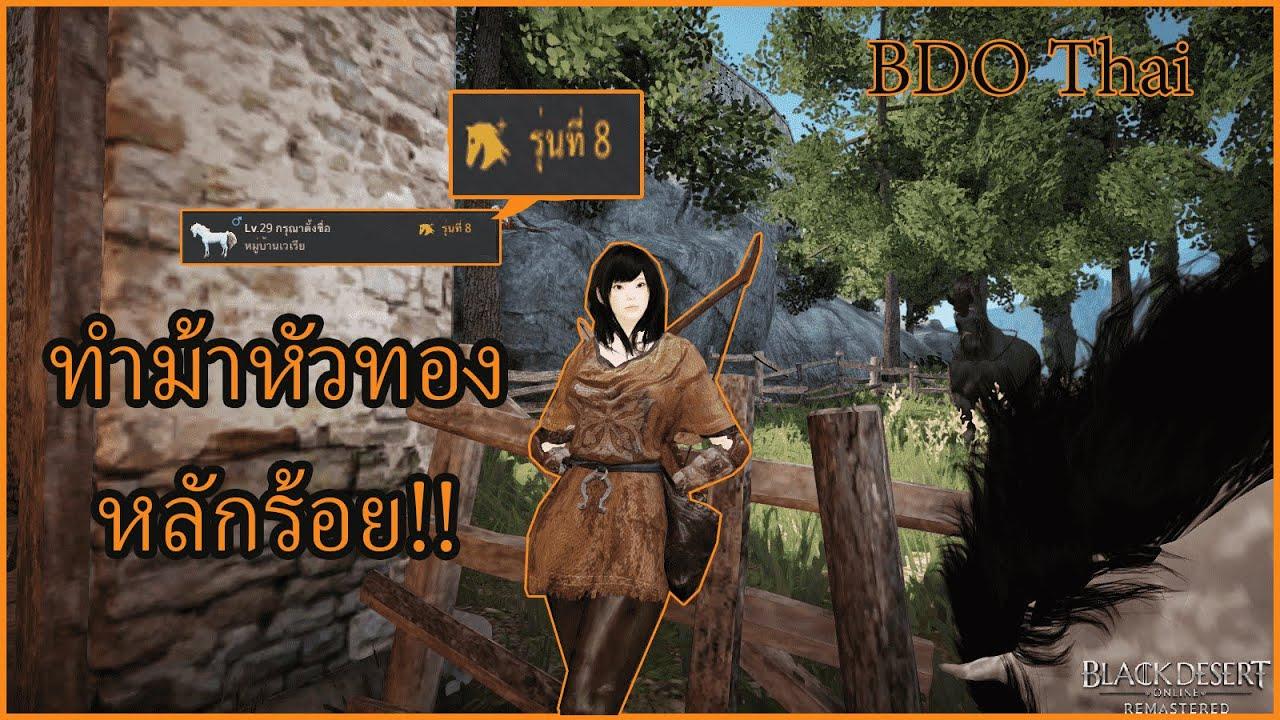 Black Desert Online Thai Dating