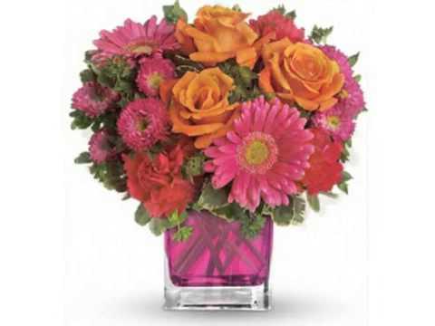 Robert's Flower Shop San Antonio TXиз YouTube · Длительность: 49 с