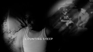 Little J - Counting Sheep