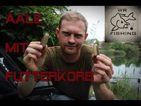 Angeln auf Aal mit Futterkorb | wr fishing