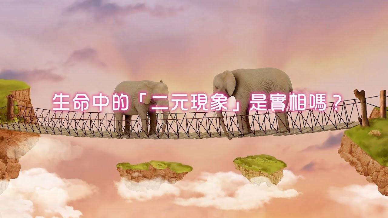劉心陽醫師【透過催眠探索生命真相 III 】2.生命中的「二元現象」是實相嗎?(CC中文字幕) - YouTube