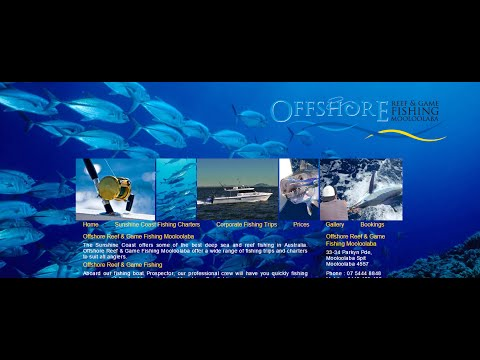 Offshore Reef And Game Fishing Mooloolaba   REVIEWS   Mooloolaba   Sunshine Coast QLD Fishing Charte