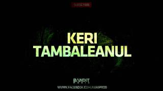 Keri vs. Irina Loghin - Tambaleanul (Official 2011 Instrumental)