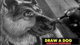 How to Draw a Dog Face Speed Drawing