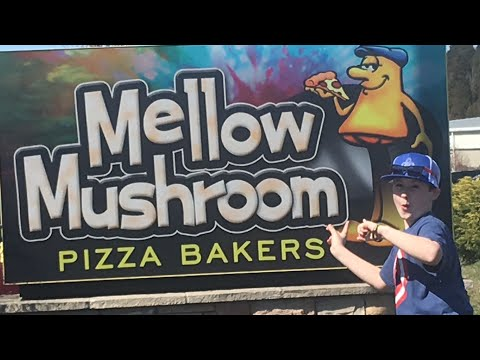 Pepperoni Pizza Review Mellow Mushroom - Does Every Item On The Menu Come With Mushrooms?