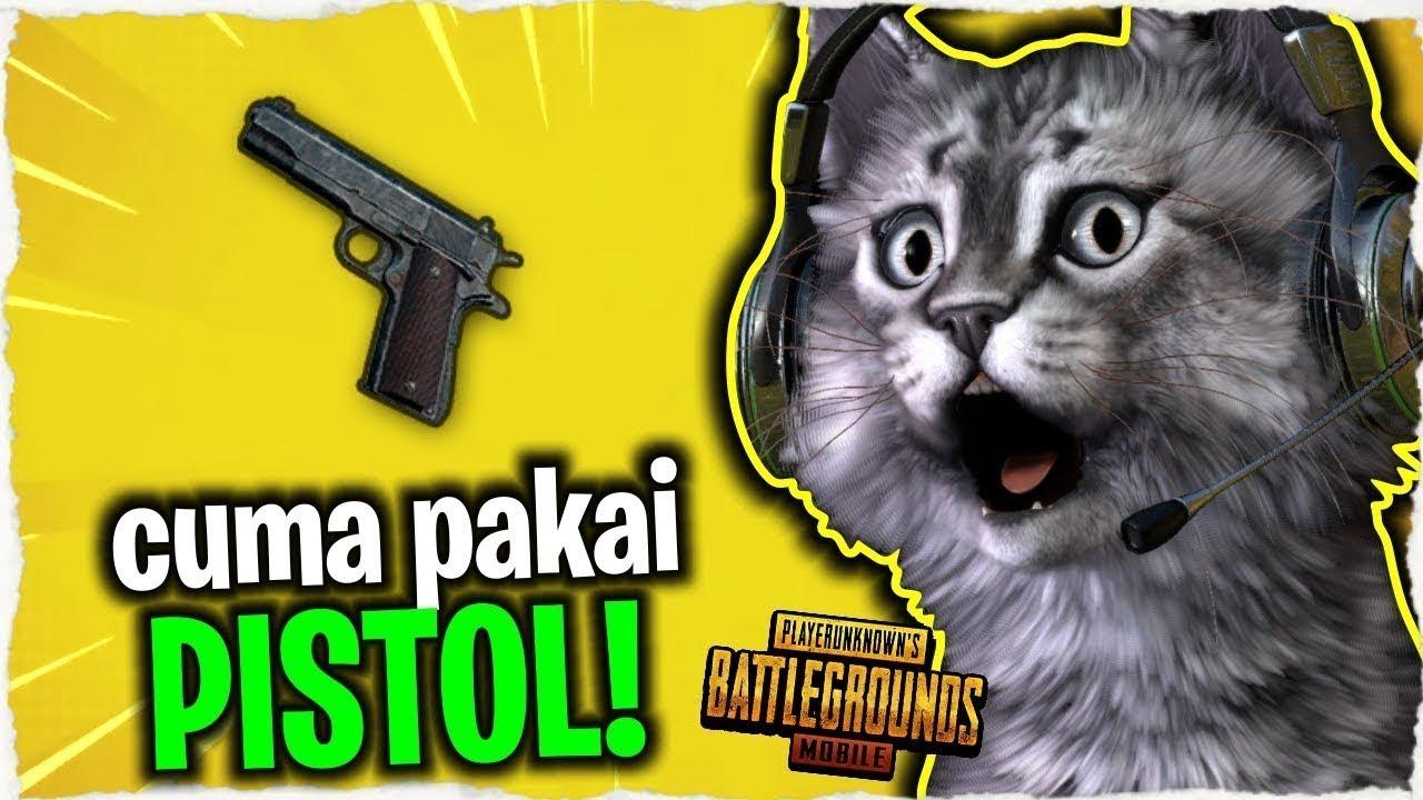 Unduh 65+  Gambar Ebbo Kucing Lucu HD