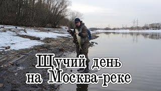 Рыбалка на Москва-реке. Щучий день. Ловля щуки на воблеры Pontoon 21.
