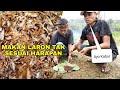 Kejadian Tak Terduga Saat Makan Laron Goreng Auto Kabur  Mp3 - Mp4 Download