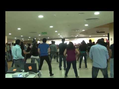 Flash Mob @ Geometric Limited, Pune STPI Office