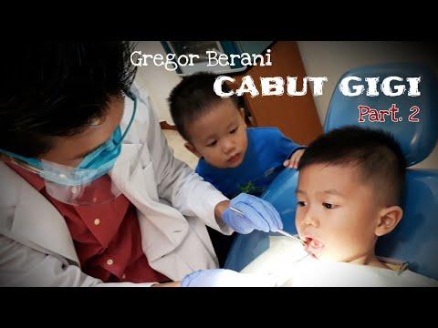 Gregor Berani ke Dokter Gigi Anak Berani Periksa Gigi dan Cabut Gigi Susu  Dental Care for Kids d715cc0ef5