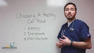 Choosing a Healthy Cat Food