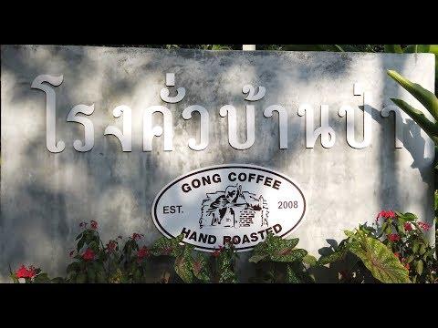 GONG COFFEE, (โรงคั่วบ้านป่า Gong Coffee)