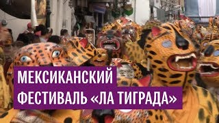 "Мексиканский фестиваль ""Ла Тиграда"""