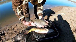 Ночная рыбалка на ЛЕЩА Река АХТУБА Рыбалка ОСЕНЬЮ 2021