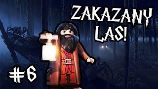 ZAKAZANY LAS! - LEGO HARRY POTTER LATA 1-4 #6