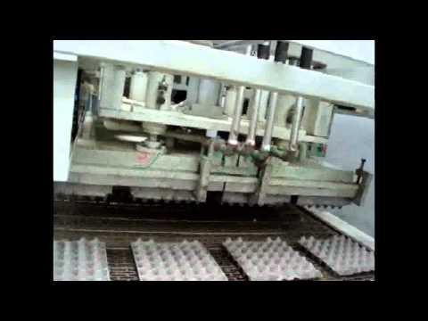 Nanya automatic paper pulp molding egg tray making machine with 1800pcs/h