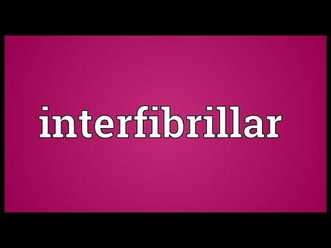 Header of interfibrillar
