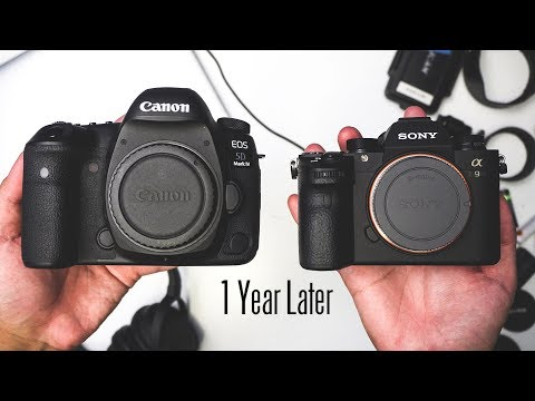 One Year Later with Sony Mirrorless - From Shooting Canon to Sony