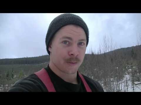 Moose Hunting BC